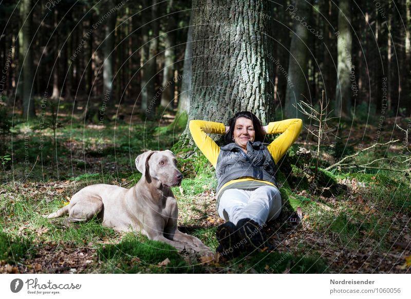 Auszeit Hund Mensch Frau Natur Baum Erholung ruhig Tier Wald Erwachsene Leben feminin Glück Lifestyle liegen träumen