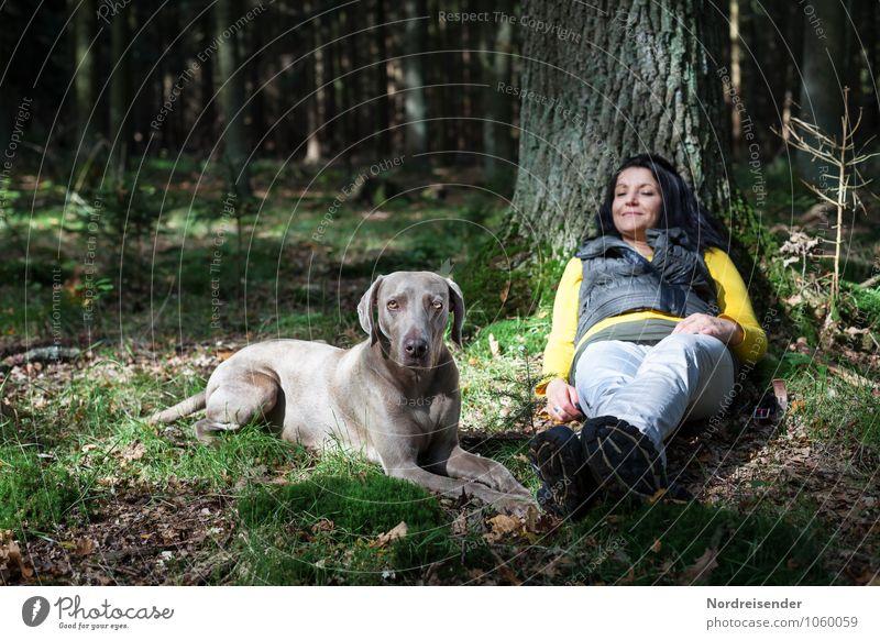 Chillen Hund Mensch Frau Natur Baum Erholung ruhig Tier Wald Erwachsene feminin Freundschaft liegen Freizeit & Hobby Idylle Zufriedenheit