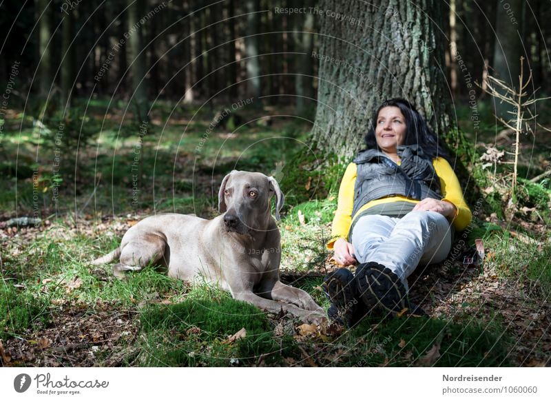 Schaltbubu | Den Tag verträumen Mensch Frau Hund Natur Sommer Baum Erholung Landschaft ruhig Tier Wald Erwachsene feminin Freizeit & Hobby wandern Fröhlichkeit
