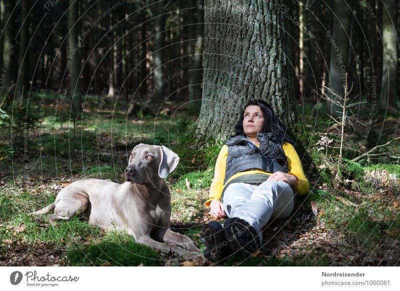 Visionen..... Wellness Sinnesorgane Erholung ruhig Meditation wandern Mensch feminin Frau Erwachsene 1 Sommer Baum Wald Tier Haustier Hund beobachten entdecken