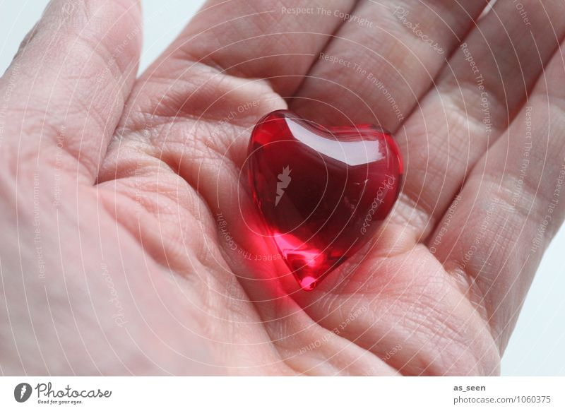 Schatz Jugendliche Farbe Hand rot Erotik 18-30 Jahre Erwachsene Leben Gefühle Liebe glänzend Freundschaft leuchten Design Geburtstag ästhetisch