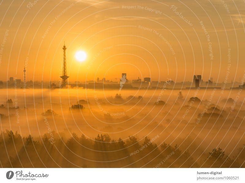 Sonnenaufgang über Berlin Wolken Nebel Baum Wald Deutschland Stadt Hauptstadt Hochhaus Turm Dach Sehenswürdigkeit Vorfreude Bild aufwachen fernsehturm Funkturm