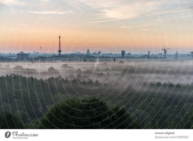Berlin nach Sonnenaufgang Stadt Baum Wolken Wald Deutschland Nebel Tourismus Hochhaus Europa Beginn Dach Skyline Hauptstadt Kran aufwachen