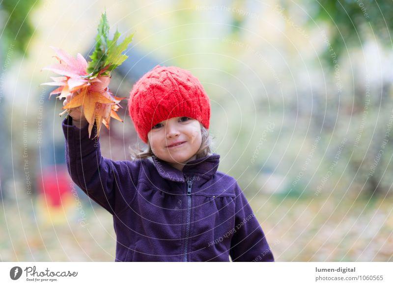 Kind winkt mit Blättern Mädchen Kindheit 1 Mensch 1-3 Jahre Kleinkind Herbst Blatt Mütze lachen Freundlichkeit Fröhlichkeit Gruß Herbstlaub winken Farbfoto