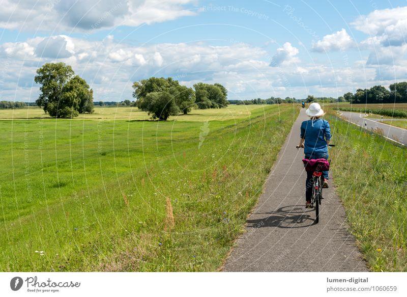 Radfahrerin auf einem Deich Frau Himmel Natur Ferien & Urlaub & Reisen Sommer Erwachsene Sport Freizeit & Hobby Aktion Tourismus Ausflug Fahrradfahren