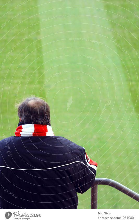 Samstags , 15:30h grün weiß rot Gras Glück Lifestyle maskulin warten beobachten Streifen Geländer Sportrasen Publikum Sportveranstaltung Fan Enttäuschung