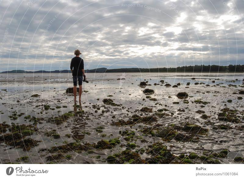 Ebbe eben.. Ferien & Urlaub & Reisen Ferne Freiheit Sommer Sommerurlaub Strand Meer wandern Watt Wattenmeer Gezeiten Horizont maskulin Umwelt Natur Landschaft
