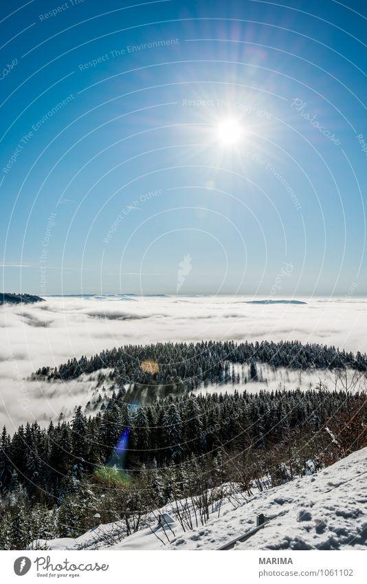 winter hike in the northern Black Forest on a sunny day Natur weiß Sonne Baum Landschaft ruhig Wolken Winter schwarz Wald kalt Umwelt Berge u. Gebirge grau Tourismus Europa