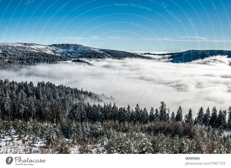 winter hike in the northern Black Forest on a sunny day Natur weiß Baum Landschaft ruhig Wolken Winter schwarz Wald kalt Umwelt Berge u. Gebirge grau Tourismus Europa Hügel