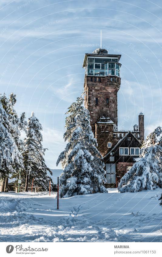 winter hike in the northern Black Forest on a sunny day ruhig Tourismus Winter Berge u. Gebirge Umwelt Natur Landschaft Wolken Baum Wald Hügel Wege & Pfade kalt