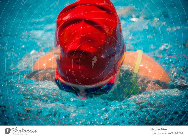 Rot ist schnell. Girl beim Breaststroke der letzten 2 Meter mit roter Badekappe beim Swimming Carnival Freude sportlich Schwimmen & Baden Sommer Schwimmbad