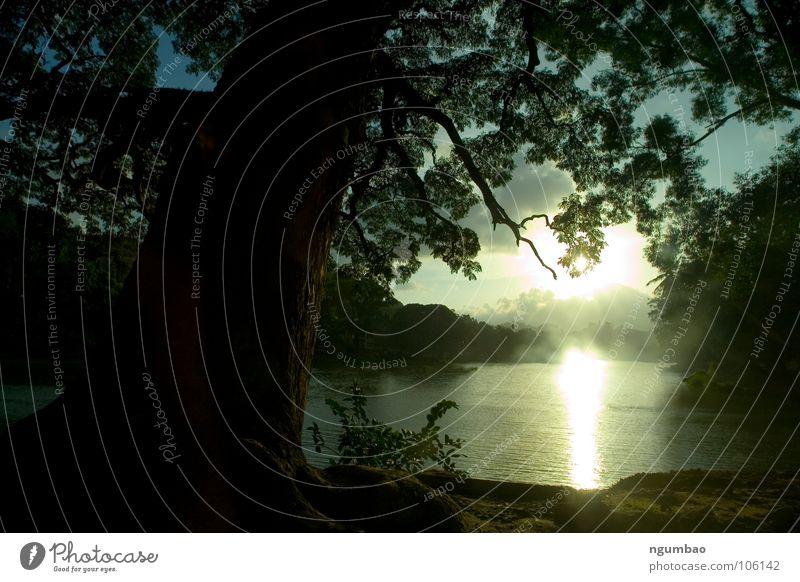 mystic river Natur Baum grün Sonne Blatt kalt dunkel Berge u. Gebirge Landschaft Frühling Sand See Erde Nebel Gemälde Süßwaren