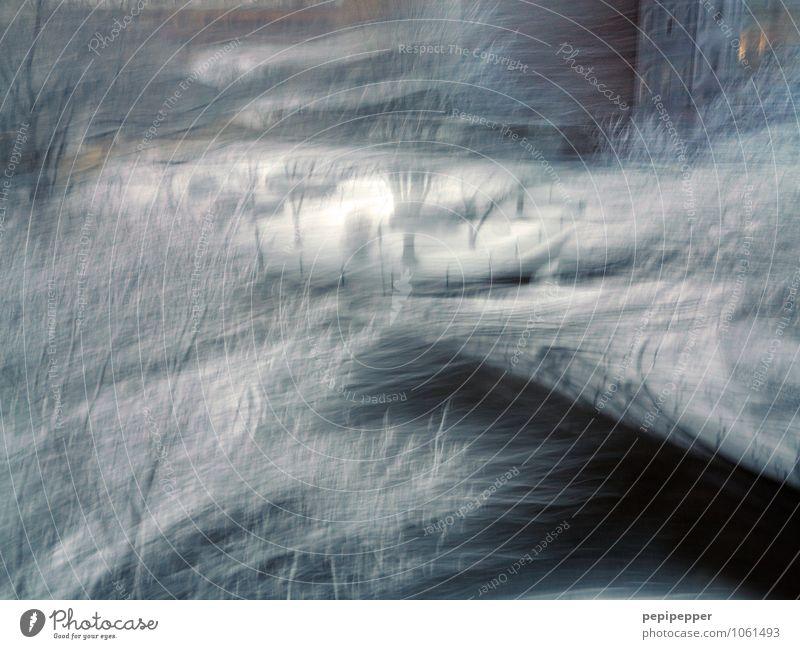 Winterblues Kunstwerk Umwelt Natur Wetter schlechtes Wetter Wind Eis Frost Schnee Schneefall Baum Stadt Stadtzentrum Haus Mauer Wand Fassade Fenster