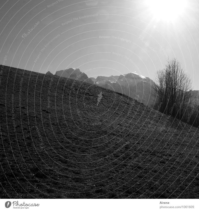 Hüttengaudi   Wo is denn jetz de Hüttn? Landschaft Urelemente Himmel Wolkenloser Himmel Sonnenlicht Schönes Wetter Sträucher Wiese Felsen Alpen Berge u. Gebirge