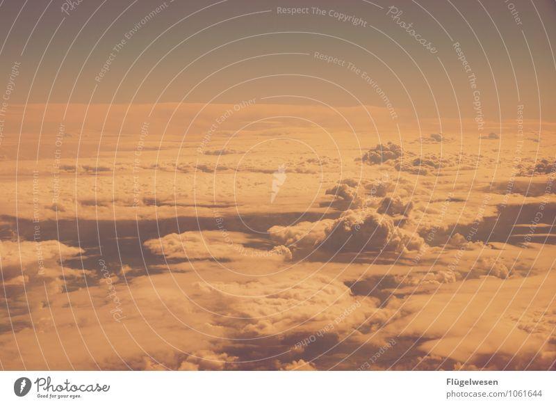 Fly Away 1 Himmel Himmel (Jenseits) Wolken Freiheit fliegen Luftverkehr Flugzeug Wolkenloser Himmel Wolkendecke Kondensstreifen Firmament Wolkenformation