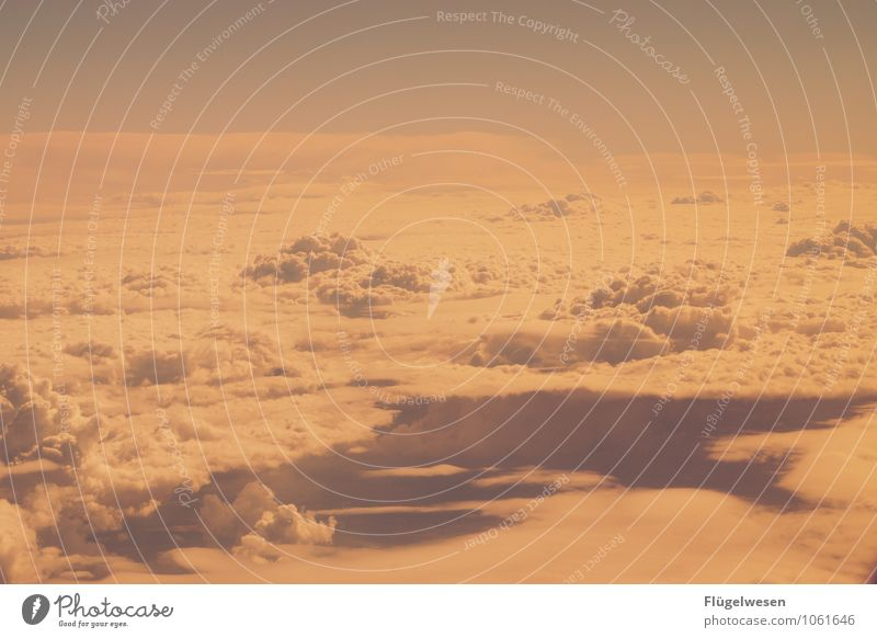 Fly Away 2 Himmel Himmel (Jenseits) Wolken Wolkendecke fliegen Luftverkehr Flugzeug Wolkenformation Freiheit Wolkenloser Himmel Firmament Altokumulus floccus