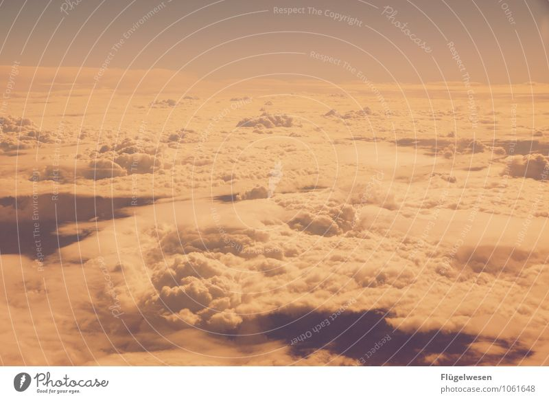 Fly Away 3 Himmel Himmel (Jenseits) Wolken Wolkendecke fliegen Luftverkehr Flugzeug Wolkenformation Freiheit Wolkenloser Himmel Firmament Altokumulus floccus