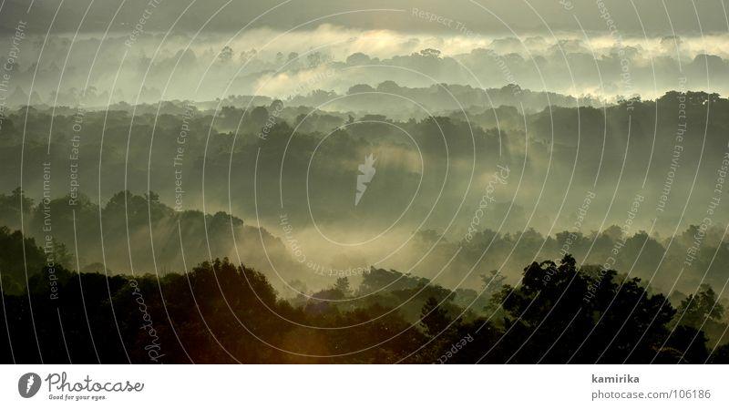 paradise Afrika Wolken Wald Holzmehl Baum Sonnenuntergang Meer Wellen Natur kenya africa clouds fog forrest trees morning sunrise Reflexion & Spiegelung sea