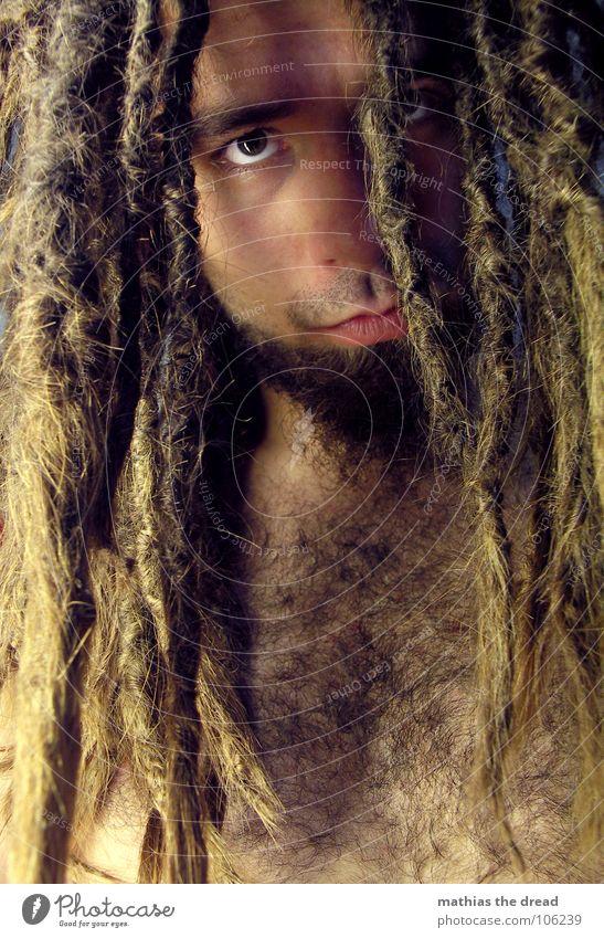 Mathias The Dread XI Mensch Mann Gesicht Auge dunkel Gefühle Haare & Frisuren hell Kraft Angst Haut maskulin gefährlich bedrohlich Wut lang