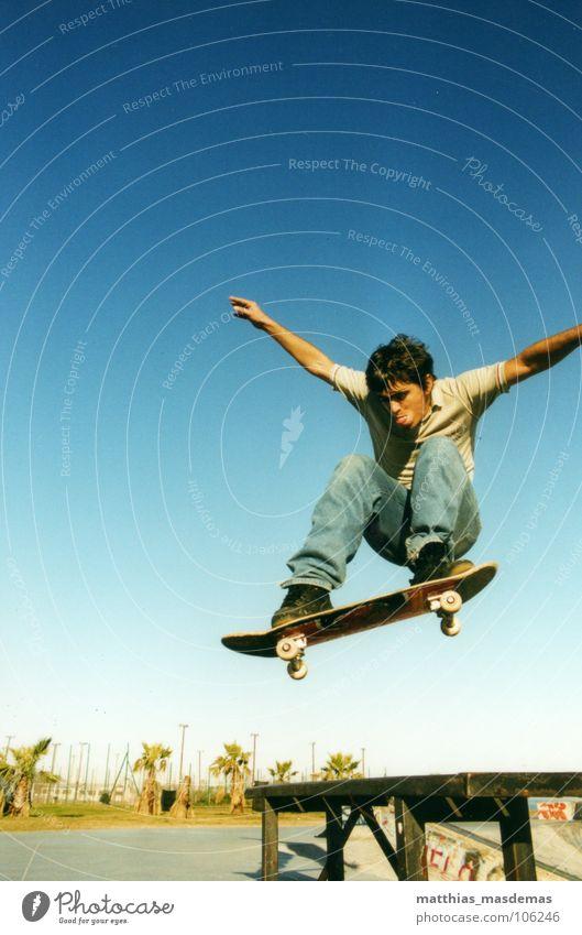 Skatepark Montevideo (Uruguay) Freude Sport Bewegung springen Horizont Zufriedenheit Arme fliegen Geschwindigkeit Luftverkehr Skateboarding Palme Dynamik Park