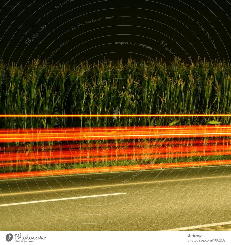 Rote Streifen Langzeitbelichtung rot grün Nacht dunkel Maisfeld Asphalt Licht Belichtung Landstraße Autofahren Unschärfe Verkehr Lichtstreifen Lichtspiel