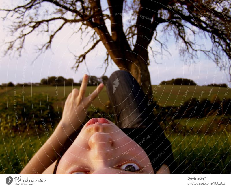 Peace Frau Himmel Hand schön Baum Landschaft Kopf Beine Hügel Frieden Zeichen