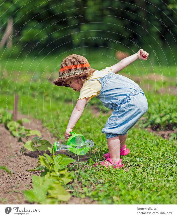 Kind gießt Gemüsebeet Sommer Kleinkind Kindheit Leben 1 Mensch 1-3 Jahre Schönes Wetter Pflanze Grünpflanze Nutzpflanze nachhaltig Natur Beet Landwirtschaft
