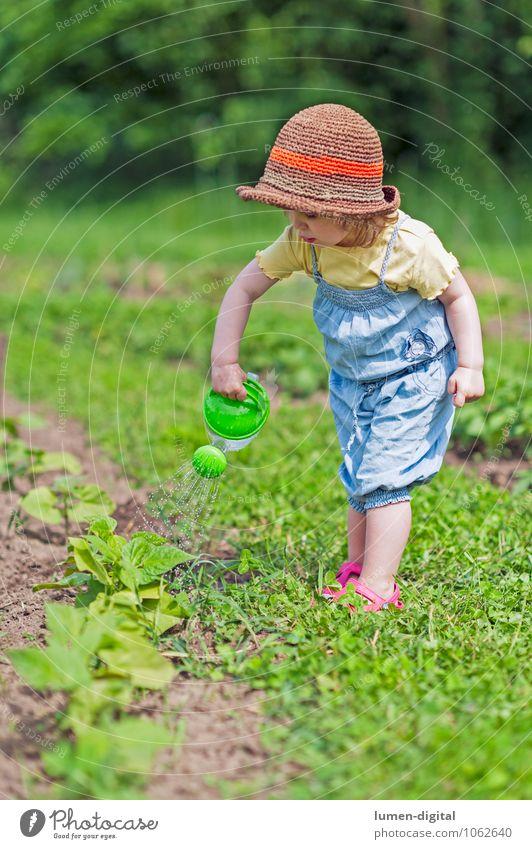 Kleinkind gießt Gemüsebeet Mensch Kind Pflanze schön grün Sommer Garten machen Beet Gartenarbeit Nutzpflanze fleißig Gießkanne