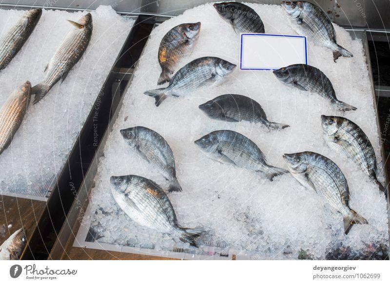Fisch auf Eis auf dem Markt. Meer Tier frisch Industrie kaufen Kochen & Garen & Backen gefroren lecker Lager Fleisch verkaufen Supermarkt roh Meeresfrüchte Sale