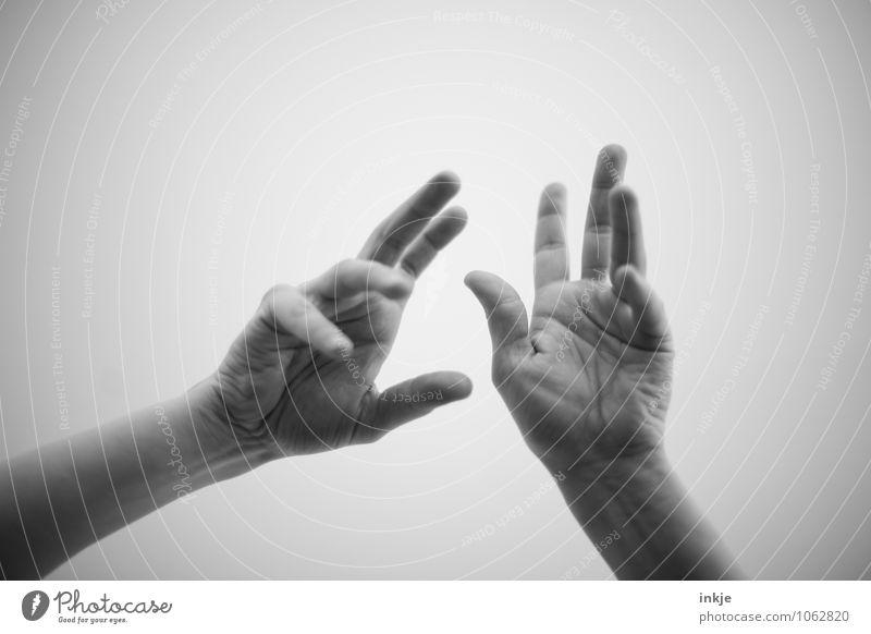 bla Mensch Frau Mann Hand Erwachsene Leben Gefühle sprechen Lifestyle Kommunizieren planen Sitzung Begeisterung Inspiration gestikulieren komplex