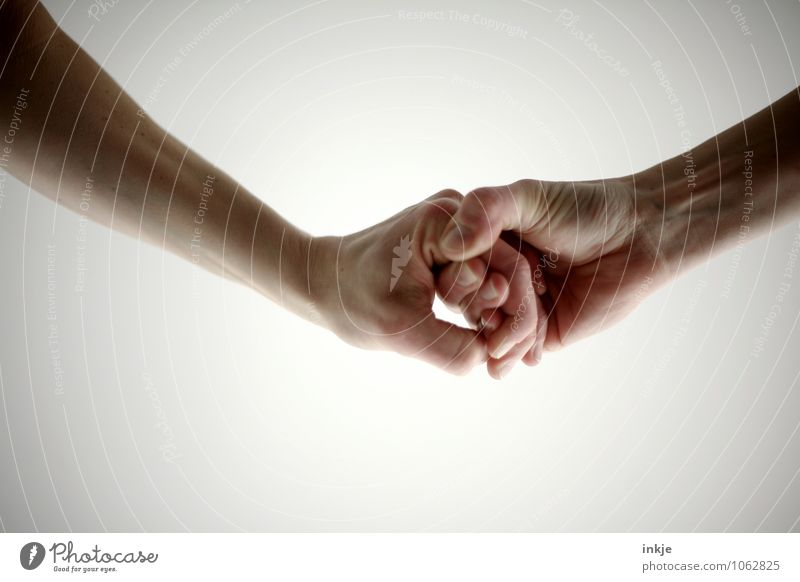 links und rechts Lifestyle Freizeit & Hobby Mensch Erwachsene Leben Arme Hand Hände schütteln 2 festhalten stark Gefühle Stimmung Erfolg Kraft Tatkraft