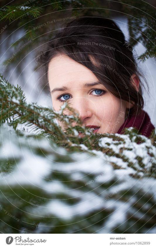 Beobachtet Mensch feminin Junge Frau Jugendliche 1 18-30 Jahre Erwachsene Natur Winter Schnee Baum Tanne Wald beobachten entdecken Blick verblüht bedrohlich