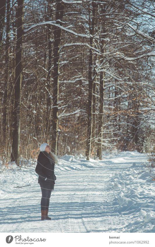 Das Gute von oben und so Mensch Frau Natur Baum ruhig Winter Wald Erwachsene Umwelt Leben Schnee feminin Stil Haare & Frisuren Lifestyle Eis
