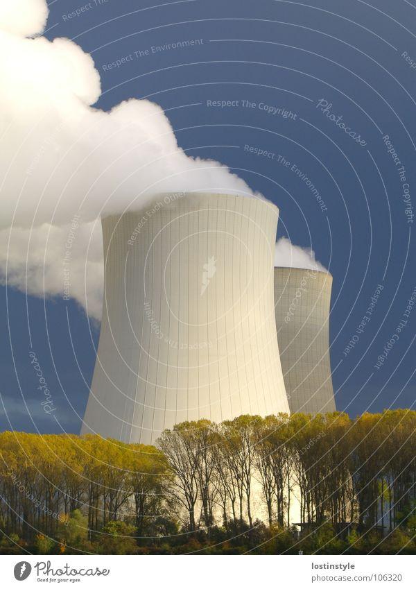 Die zwei Türme Himmel Baum Wolken Luft dreckig Nebel Umwelt Industrie Energiewirtschaft Kernkraftwerk Atom