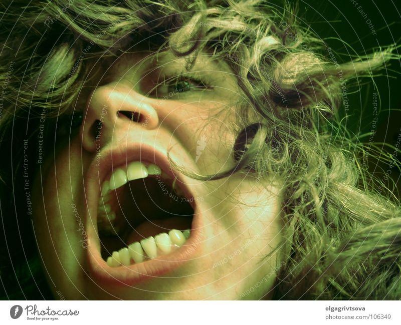 Der Löwenschrei gefährlich beängstigend bissig angriffslustig Wut Ärger schreien Wildtier Zähne