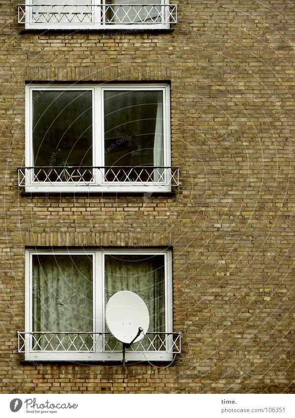 Bürger, lass das Glotzen sein... [I] Haus Fenster Wand Mauer Stein Idylle trist Suche Umzug (Wohnungswechsel) Balkon Fernsehen Backstein Langeweile Vorhang