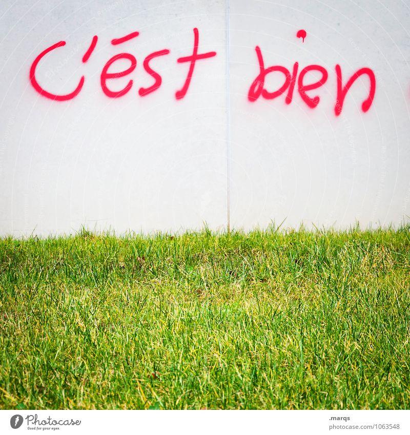in Ordnung Wiese Mauer Wand Schriftzeichen Graffiti hell grün rot weiß Frühlingsgefühle Vorfreude alles klar Französisch positiv gut Farbfoto Außenaufnahme