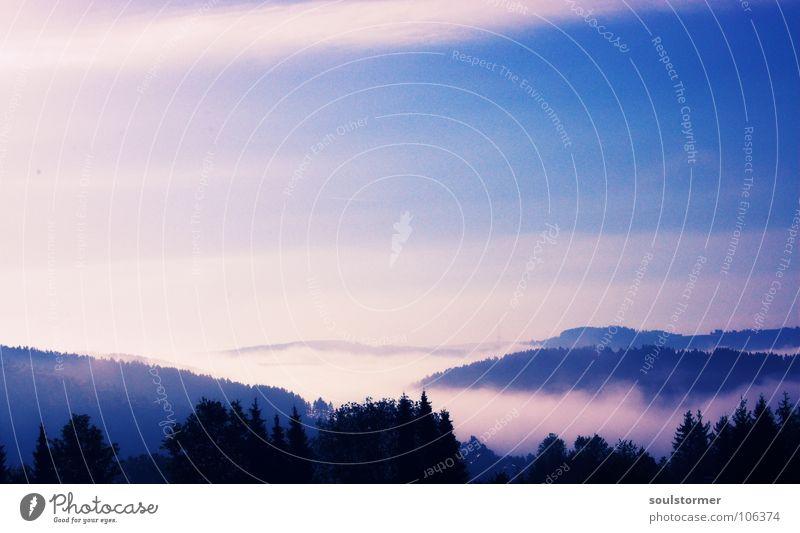 ein Moment später, als ganz früh... Cross Processing Grünstich Gelbstich Wolken Sonnenaufgang Baum Wald Baumkrone Nebel Hügel schön Märchen Märchenlandschaft