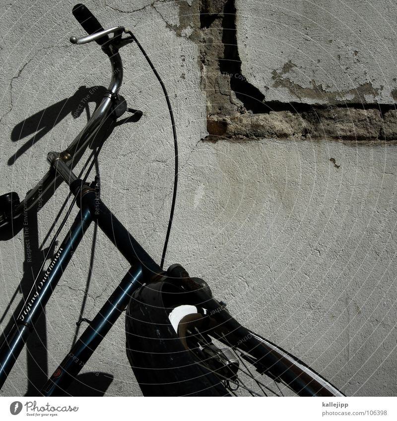 eseldraht Fahrrad Oldtimer Rad Gummi Ständer Mauer Rücklicht Hinterhof Kotflügel Felge Speichen Chrom grün Gras Schlauch Mantel Lampe Elektrisches Gerät