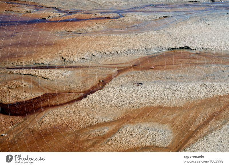 Les Pins sec Natur Sand Wasser Strand Meer braun Ewigkeit fließen Delta Mineralien Strukturen & Formen formen ewig verzweigen feucht eisenhaltig Boden Erde