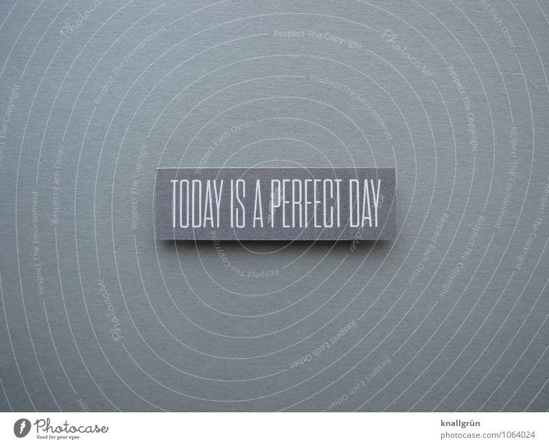 TODAY IS A PERFECT DAY Schriftzeichen Schilder & Markierungen Kommunizieren eckig positiv grau weiß Gefühle Stimmung Zufriedenheit Lebensfreude Begeisterung