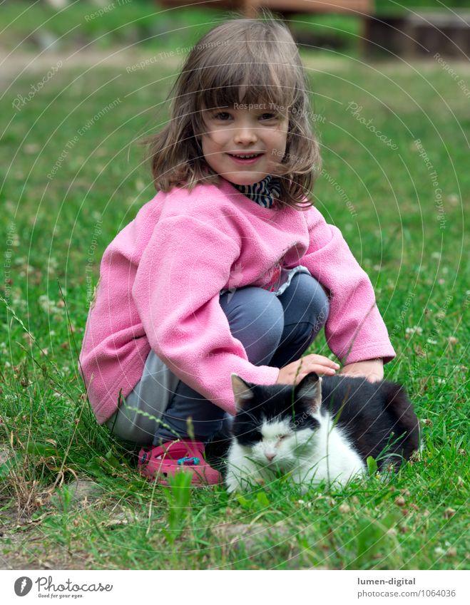 Kind mit Katze Freude schön Spielen Kinderspiel Garten Mädchen 3-8 Jahre Kindheit Gras Wiese blond Haustier berühren lachen Blick Fröhlichkeit lustig natürlich
