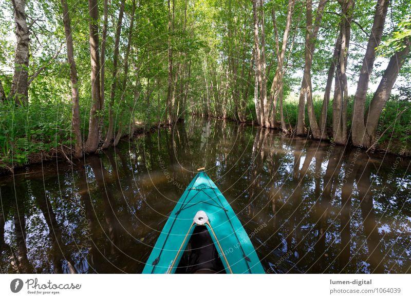 Paddelboot auf einem Kanal Erholung Freizeit & Hobby Sommerurlaub Wassersport Frühling Baum Flussufer Bach Bootsfahrt Sportboot Wasserfahrzeug sportlich