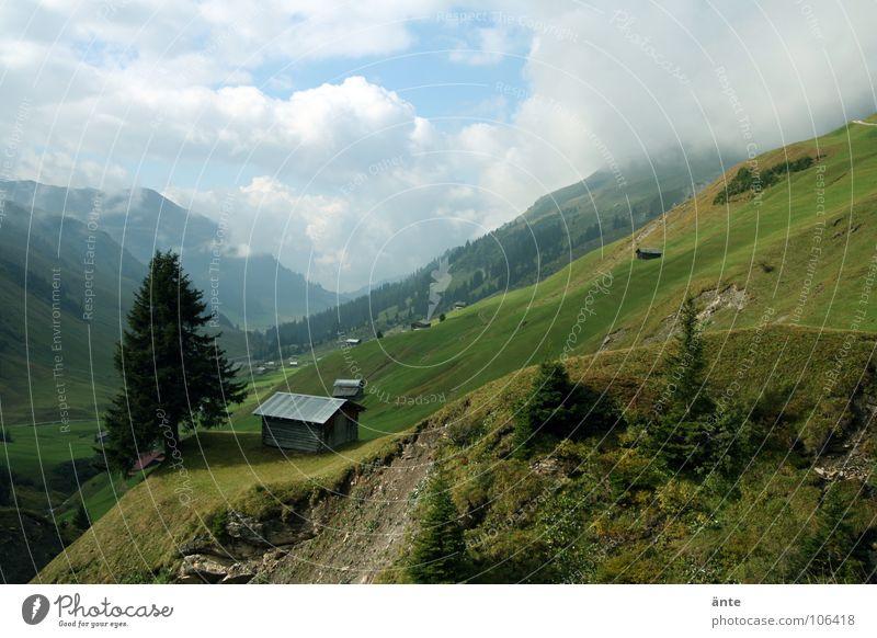 stehen geblieben Sommer Berge u. Gebirge Gesundheit Luft Idylle Aussicht gefährlich bedrohlich Niveau Alpen Hütte Schweiz Tanne Bergsteigen Heimat Tal