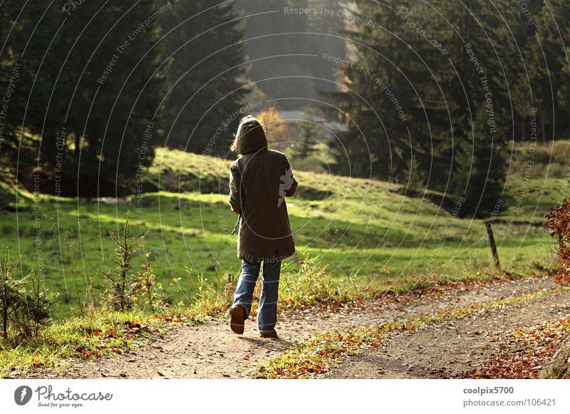 Outdoor Jugendliche Baum grün Einsamkeit Wald Erholung Herbst Wiese Wege & Pfade wandern Spaziergang Freizeit & Hobby Weide Zaun heimwärts Waldrand