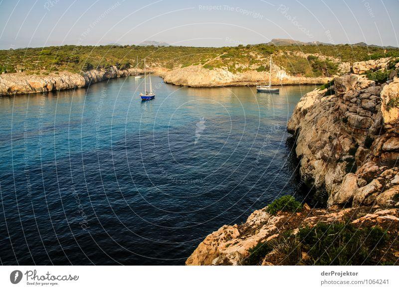 Mallorca von seiner schönen Seite 62 – Segelbucht Natur Ferien & Urlaub & Reisen Pflanze Sommer Erholung Meer Landschaft Freude Tier Strand Ferne Umwelt