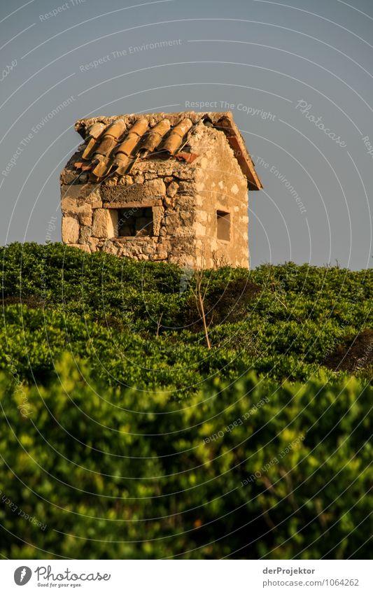 Mallorca von seiner schönen Seite 70 – Kleinstfinca Ferien & Urlaub & Reisen Tourismus Ausflug Abenteuer Ferne Sommerurlaub Berge u. Gebirge wandern Umwelt
