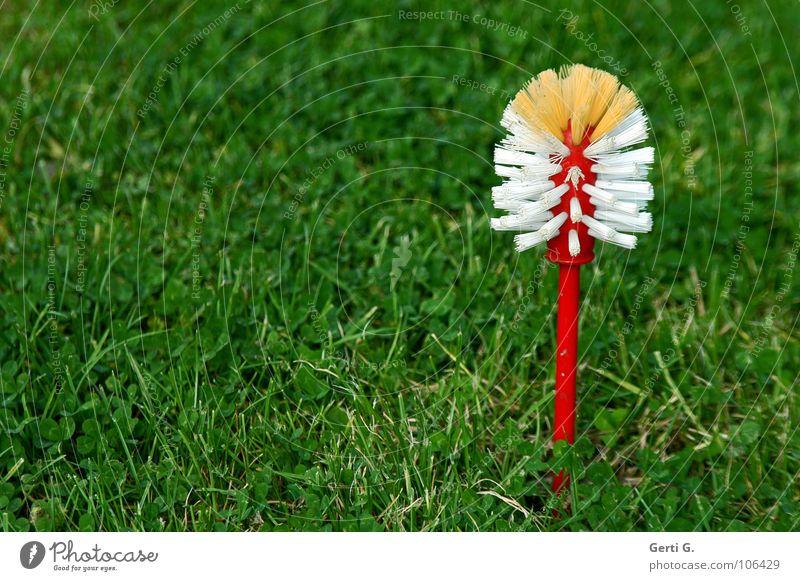 plastic flower weiß rot Wiese Gras Rasen Reinigen Stengel Statue obskur Kunststoff Haushalt Qualität Körperpflegeutensilien Bürste Borsten Kurzwaren