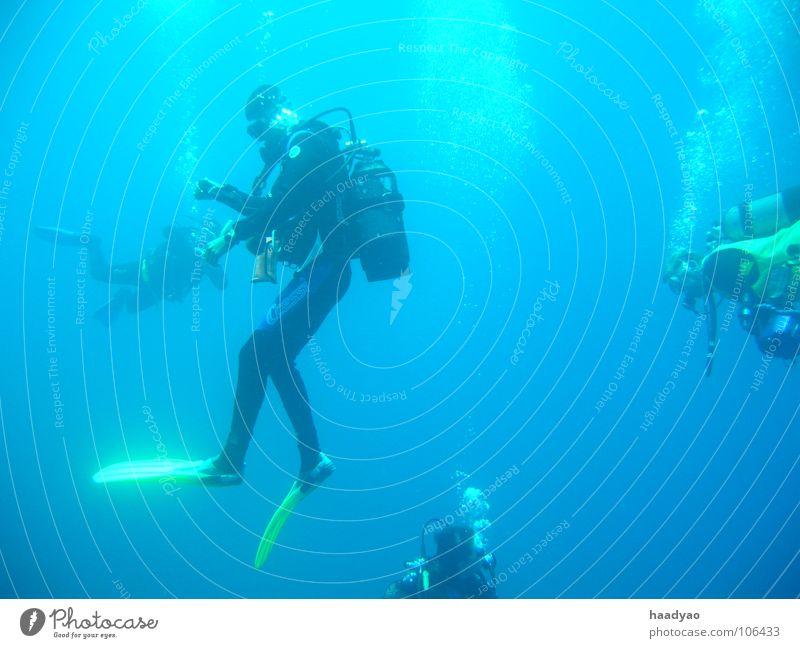 Schwerelos tauchen Meer Taucher Ferien & Urlaub & Reisen Strand Cabo Verde Afrika Schwerelosigkeit Luft Sauerstoff Wassersport Menschengruppe blau blasen