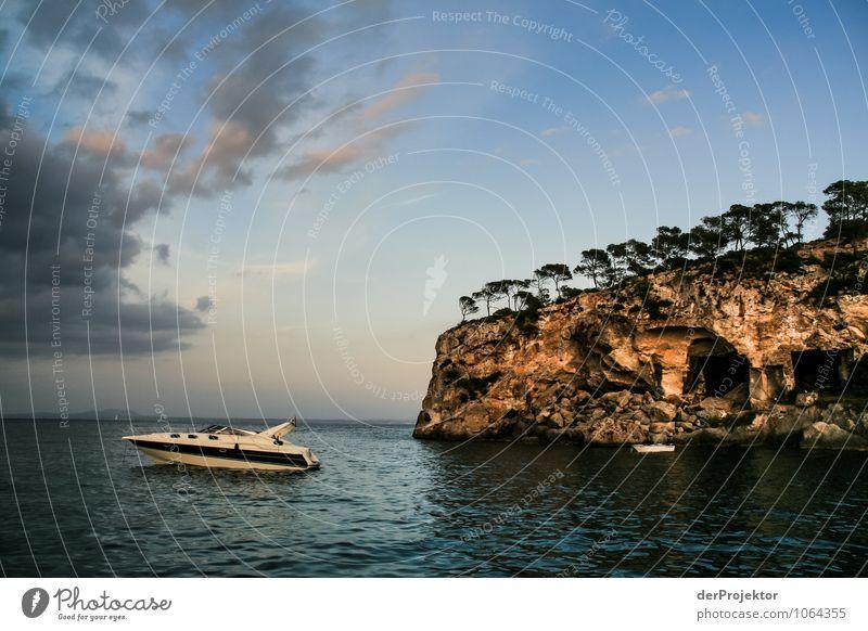 Mallorca von seiner schönen Seite 44 – wie gemalt Ferien & Urlaub & Reisen Tourismus Ferne Freiheit Kreuzfahrt Sommerurlaub Umwelt Natur Landschaft Pflanze Tier